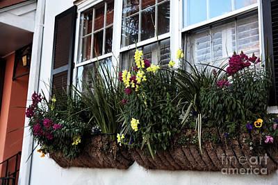 Flowers In The Window Print by John Rizzuto