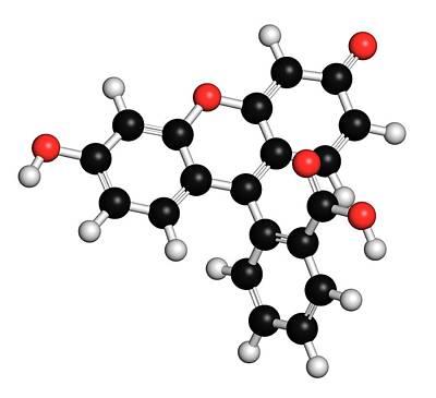 3 Fish Photograph - Fluorescein Fluorescent Molecule by Molekuul