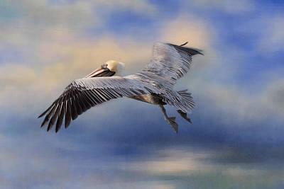 Photograph - Fly Away by Kim Hojnacki
