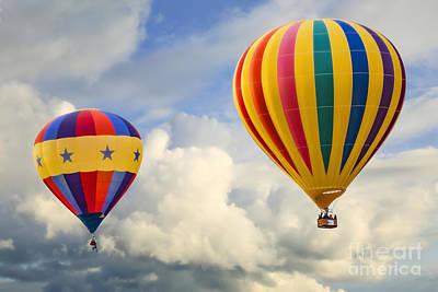 Flying High Art Print by Brenda Giasson
