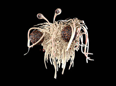 Creationism Photograph - Flying Spaghetti Monster by Christian Darkin
