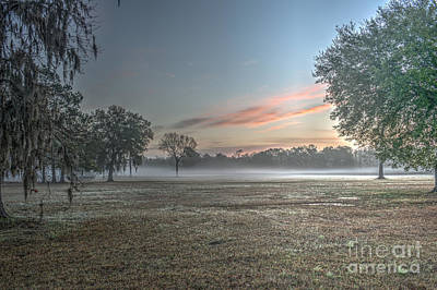 Photograph - Fog In The Lowcountry by Dale Powell