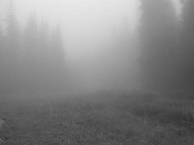 Photograph - Fog In Tileston Meadow by Thomas Samida