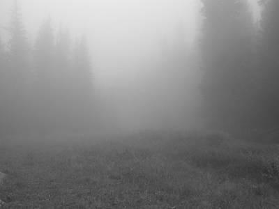 Fog In Tileston Meadow Art Print