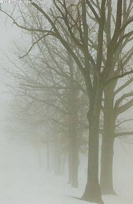 Photograph - Fog by Karin Thue