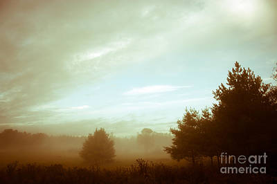 Photograph - Fog Of Yesteryear by Cheryl Baxter