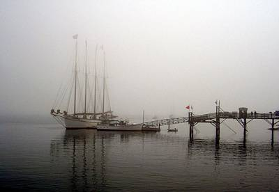 Photograph - Fogged In by Carolyn Jacob
