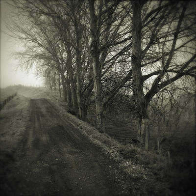 Winter Road Scenes Photograph - Foggy Trail by Les Cunliffe