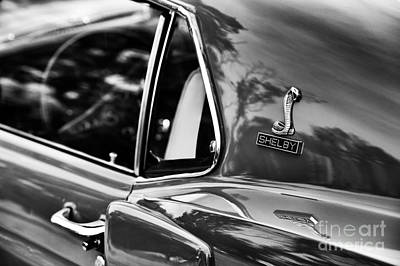 Ford Shelby Mustang Gt350 Art Print by Tim Gainey