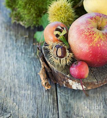 Npetolas Photograph - Forest Fruit by Mythja  Photography