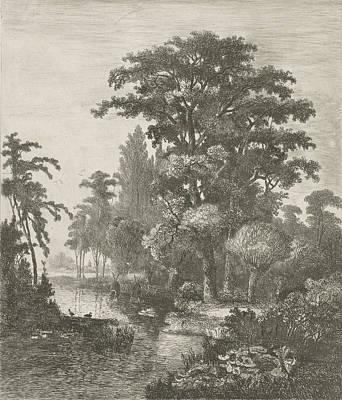 Wood Duck Drawing - Forest Scene With Two Ducks Nesting In A River by Hermanus Jan Hendrik Van Rijkelijkhuysen