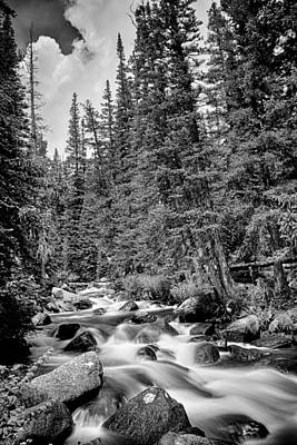 Photograph - Forest Stream In Black And White by James BO Insogna