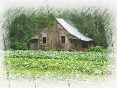 Photograph - Forgotten Homestead by Joe Duket