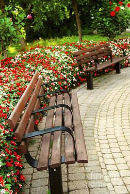 Lush Photograph - Formal Garden by Elena Elisseeva