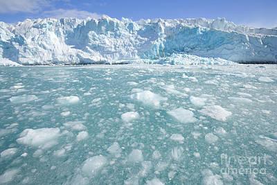 Bergy-bit Photograph - Fortuna Glacier Descending  by Yva Momatiuk John Eastcott