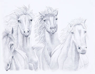 Wild Horses Drawing - Four For Freedom by Joette Snyder