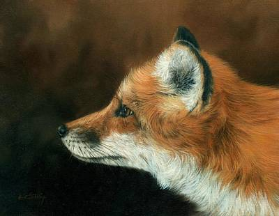 Red Fox Painting - Fox by David Stribbling