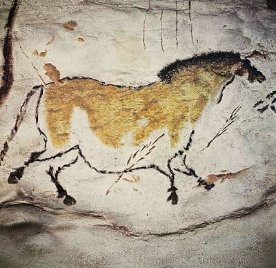 Interior Scene Photograph - France. Montignac. The Cave Of Lascaux by Everett
