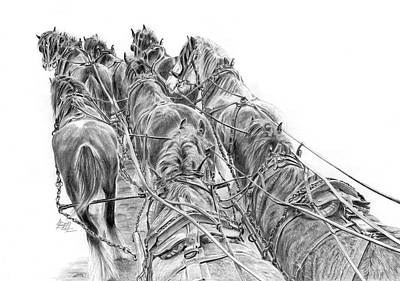 Clydesdale Drawing - Fred's Team At Ganmain by Leonie Bell