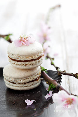 Macaroons Photograph - French Macaroons by Kati Finell