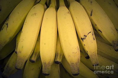 Photograph - Fresh Bananas On A Street Fair In Brazil. by Ricardo Lisboa