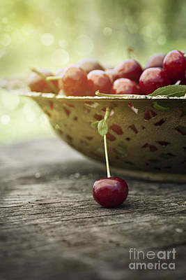 Mythja Photograph - Fresh Cherry by Mythja  Photography