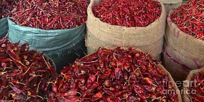 Not In Use Photograph - Fresh Dried Chilli On Display For Sale Zay Cho Street Market 27th Street Mandalay Burma by Ralph A  Ledergerber-Photography