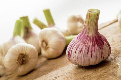 Fresh Garlic Art Print by Aberration Films Ltd