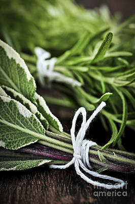 Rosemary Photograph - Fresh Herbs In Bunches by Elena Elisseeva