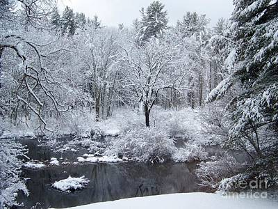 Photograph - Fresh Snow Falls Along The Tree Lines Stream by Eunice Miller