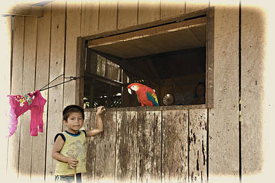 Photograph - Parrot And Boy by Maria Coulson