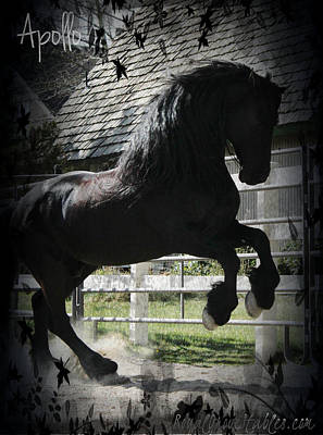 Friesian Stallion Art Print