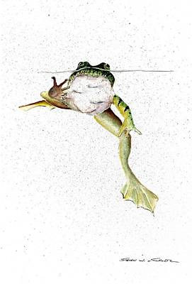 Amphibians Painting - Frog On Waterline by Steven Schultz