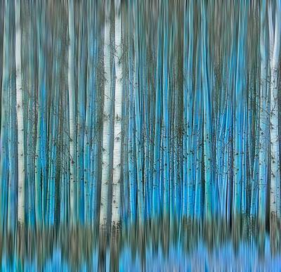 Photograph - Frosty Blue by Thomas Born