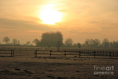 Uncle Sam Posters - Frosty morning by Four Hands Art