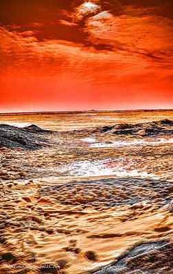 Cold Photograph - Frozen Shores by LeeAnn McLaneGoetz McLaneGoetzStudioLLCcom