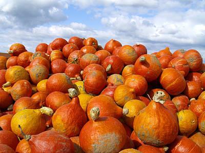 Frucht, Fruechte, Herbst, Kuerbis Art Print