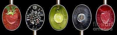 Rosaceae Photograph - Fruit Spoons On Black by Tim Gainey