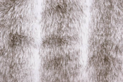 Fur Background Art Print