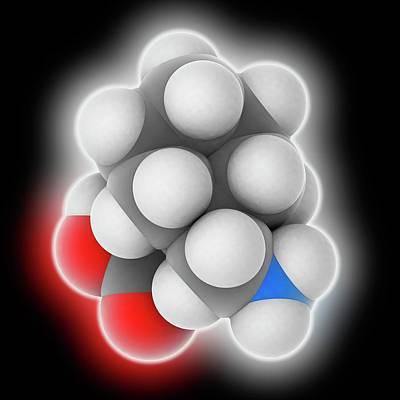 Gabapentin Drug Molecule Art Print by Laguna Design