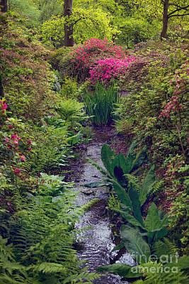 Dreamy Pink Park Scene Photograph - Garden by Svetlana Sewell