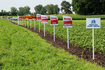 Roundup Photograph - Genetically Modified Crop Signs by Jim West