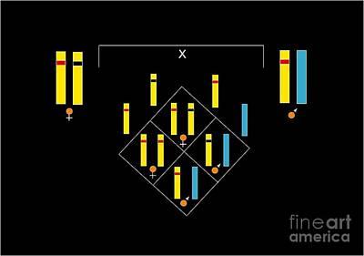 Genetics Of Color Blindness, Artwork Art Print