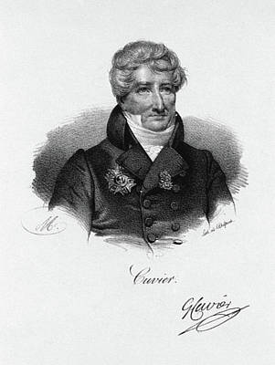 Lapel Painting - Georges Cuvier (1769-1832) by Granger