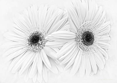 Photograph - Gerber Daisies In Black And White by Jennie Marie Schell