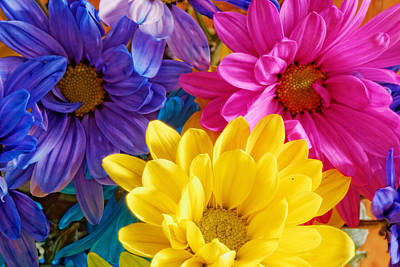 Photograph - Gerber Flowers by Peter Lakomy