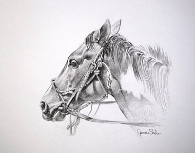 Drawing - Get Along Home Susie by James Skiles