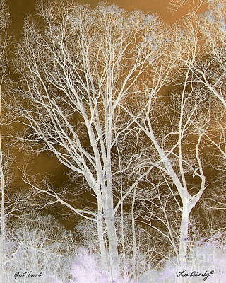 Photograph - Ghost Tree 2 by Lee Owenby