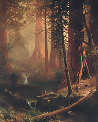 Beautiful Creek Painting - Giant Redwood Trees Of California by Mountain Dreams