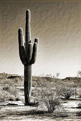 Photograph - Giant Saguaro Cactus by Gabriele Pomykaj